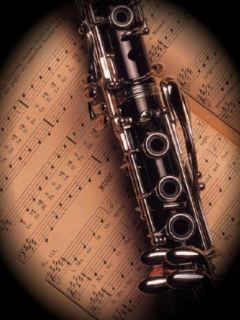 Letos sta bila nagrajena kar dva učitelja klarineta.