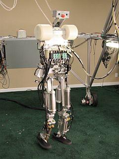 Dexter: 2 nogi, visok 175 cm, težek 60 kg. Foto: www.anybots.com
