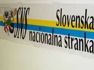 SNS še nikoli ni sestavljala koalicije. Foto: RTV SLO