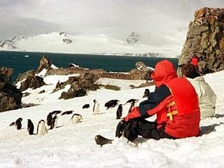 Število turistov na Antarktiki se je v zadnjih letih močno povečalo. Foto: Reuters