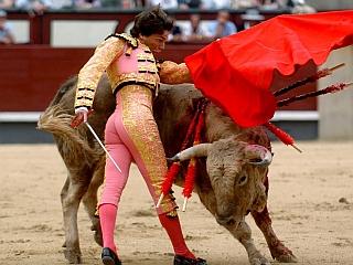 Bikoborci so v Španiji narodni junaki in posebni umetniki. Foto: EPA