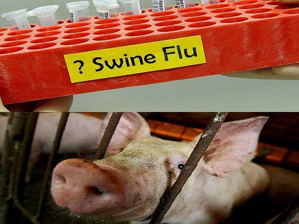 Prašičja gripa