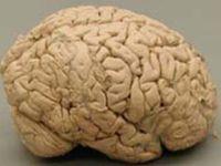 Parkinsonova bolezen je progresivno degenerativno stanje centralnega živčnega sistema.