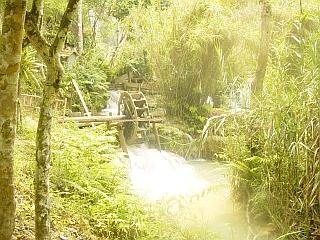 Tat Kuang Si je prej negovan park kot divja džungla. Foto: RTV SLO