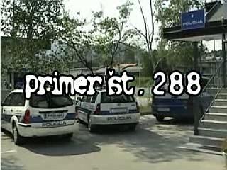 Zmagoviti video Primer št. 288. Foto: MMC RTV SLO