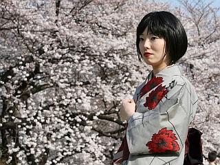 Ena najlepših in najbolj značilnih podob dežele vzhajajočega sonca, v kateri je sodobnost zelo zaznamovana s tradicijo: japonsko dekle v kimonu sredi češnjevih cvetov sredi parka Šindžuku v ultramodernem Tokiu. Foto: EPA