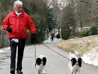 Psi na povodcu